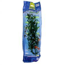 Гигрофила (Hygrophila) 30см, растение пластиковое TetraPlantastics
