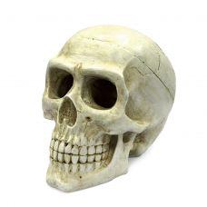 Декоративная композиция ArtUniq Large Skull