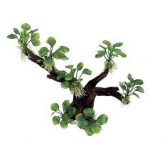 Декоративная композиция ArtUniq Branched Driftwood With Anubias nana M1
