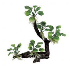 Декоративная композиция ArtUniq Branched Driftwood With Anubias nana M4