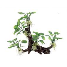 Декоративная композиция ArtUniq Branched Driftwood With Anubias nana M5