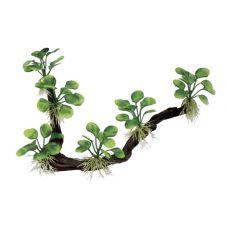Декоративная композиция ArtUniq Branched Driftwood With Anubias nana M7