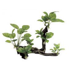 Декоративная композиция ArtUniq Branched Driftwood With Anubias L