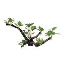 Декоративная композиция ArtUniq Branched Driftwood With Anubias XL