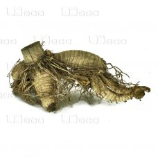 Коряга UDeco Bamboo hair root M 15-30см
