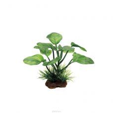 Набор искусственных растений ArtUniq Anubias Set 6x10