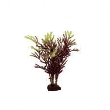 Набор искусственных растений ArtUniq Hottonia brown-yellow Set 6x10